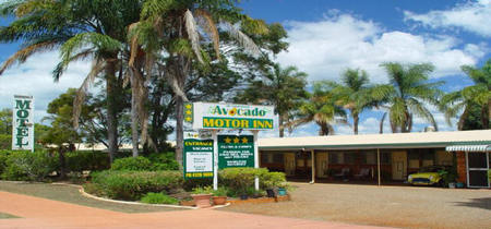 Avocado Motor Inn - Whitsundays Accommodation