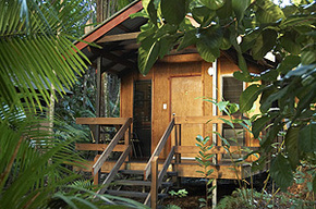 Cape Trib Beach House - Whitsundays Accommodation