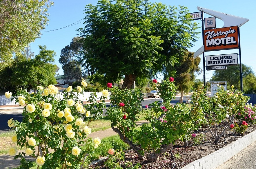 Narrogin Motel - Whitsundays Accommodation