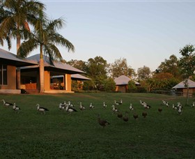 Feathers Sanctuary - Whitsundays Accommodation