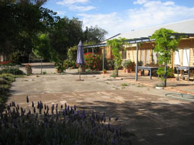 Peechabella Vineyards Bed  Breakfast - Whitsundays Accommodation