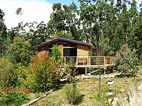 Southern Forest Accommodation - Whitsundays Accommodation