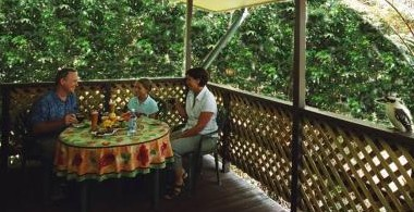 Chambers Wildlife Rainforest Lodges - Whitsundays Accommodation