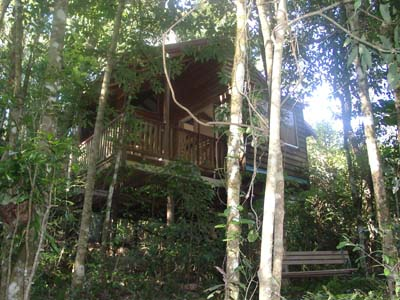 Adjinbilly Rainforest Retreat Cabins - Whitsundays Accommodation