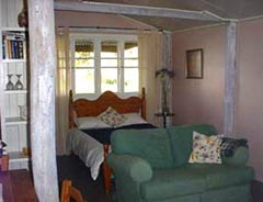 Bunnyconnellen Olive Grove and Vineyard - Whitsundays Accommodation