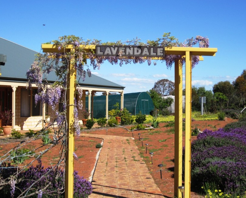 Lavendale Farmstay and Cottages - Whitsundays Accommodation