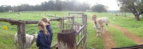 Boronia Farm Farmstay