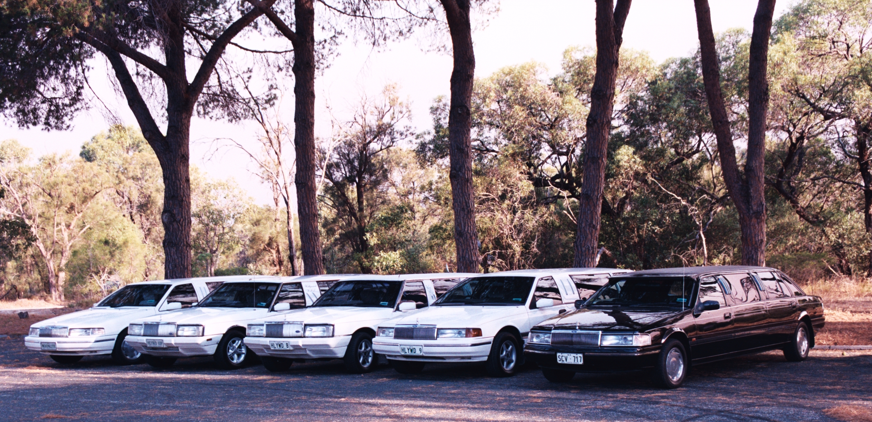 Hollywood VIP Limousines - Whitsundays Accommodation
