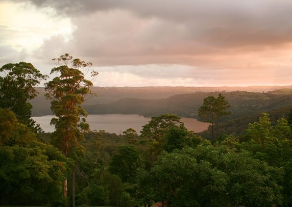 Montville Misty View Cabins - Whitsundays Accommodation