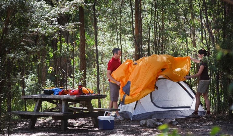 Bald Rock campground and picnic area - Whitsundays Accommodation