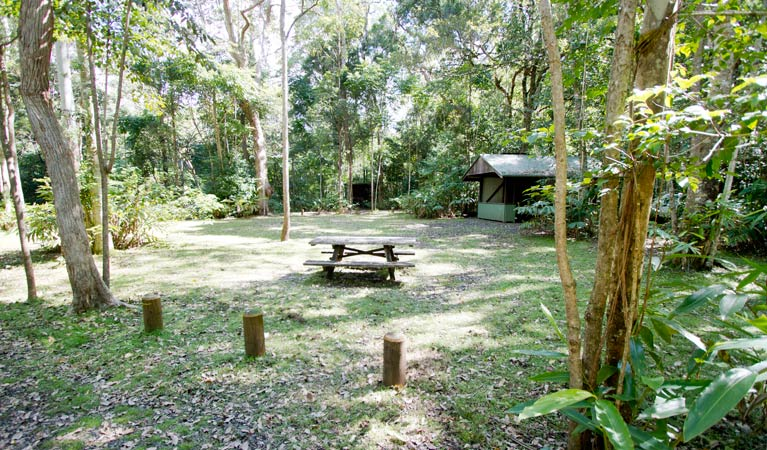 Iron Pot Creek campground - Whitsundays Accommodation