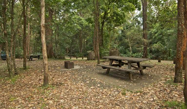 Sheepstation Creek campground - Whitsundays Accommodation