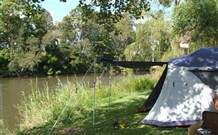 Williams River Holiday Park - Whitsundays Accommodation