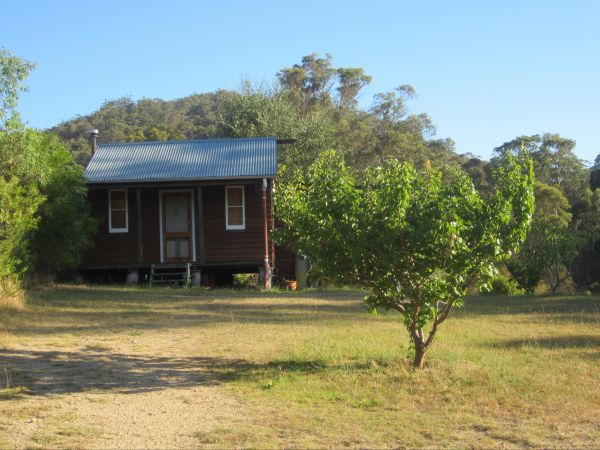 Peach Tree Cabin - Whitsundays Accommodation