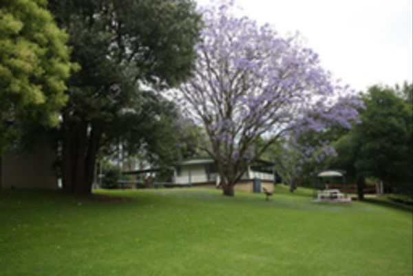 Hawkesbury Riverside Tourist Park - Whitsundays Accommodation
