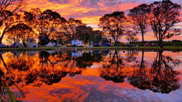 Coonawarra Bush Holiday Park - Whitsundays Accommodation