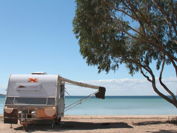 Discovery Parks - Streaky Bay Foreshore - Whitsundays Accommodation