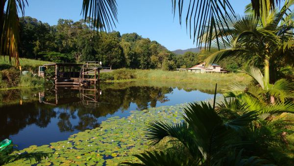 Hosanna Farmstay - Whitsundays Accommodation