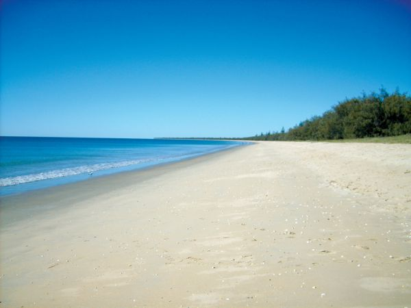 Woodgate Beach Tourist Park - Whitsundays Accommodation