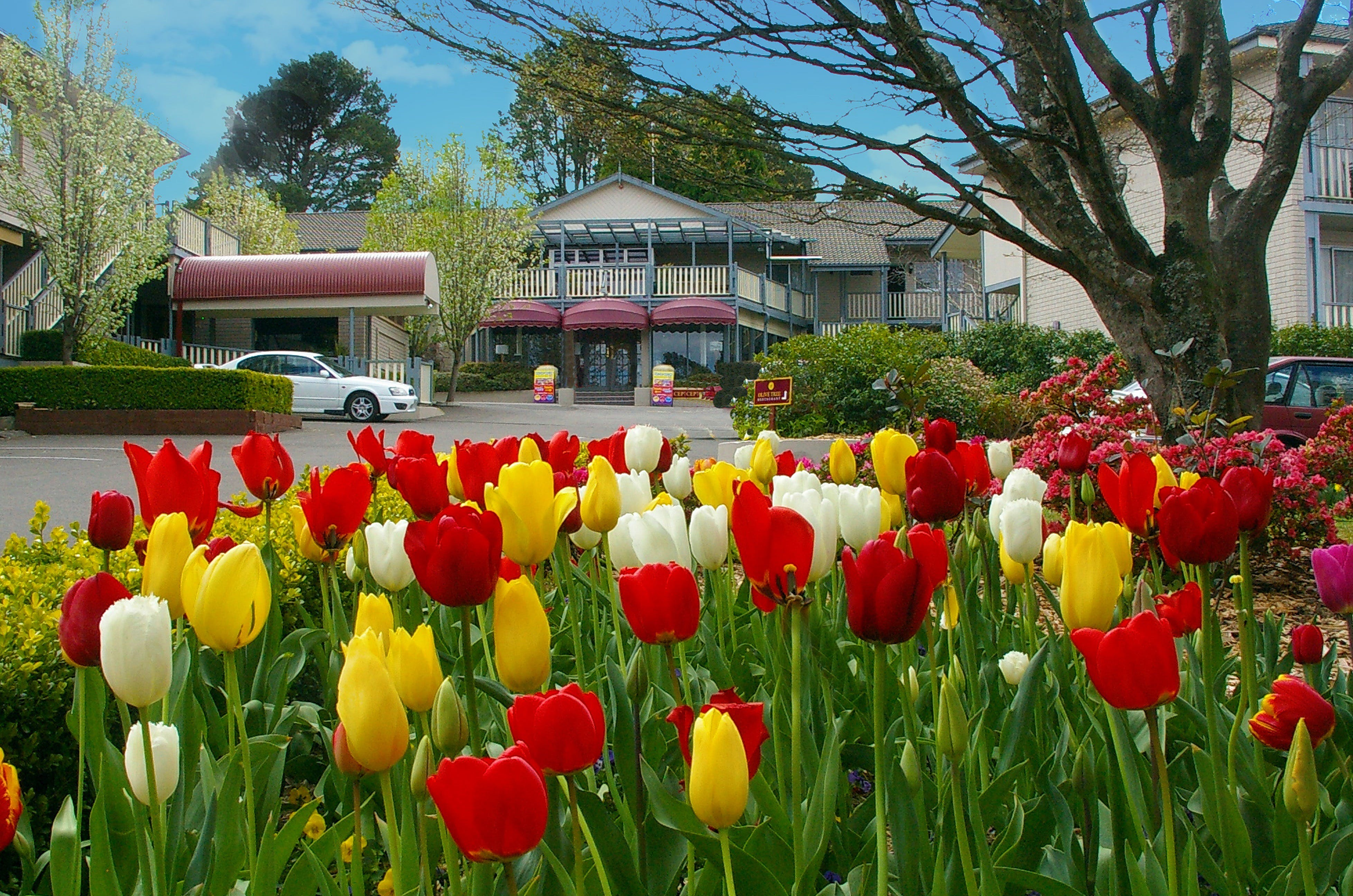 Nesuto Leura Gardens Hotel - Whitsundays Accommodation