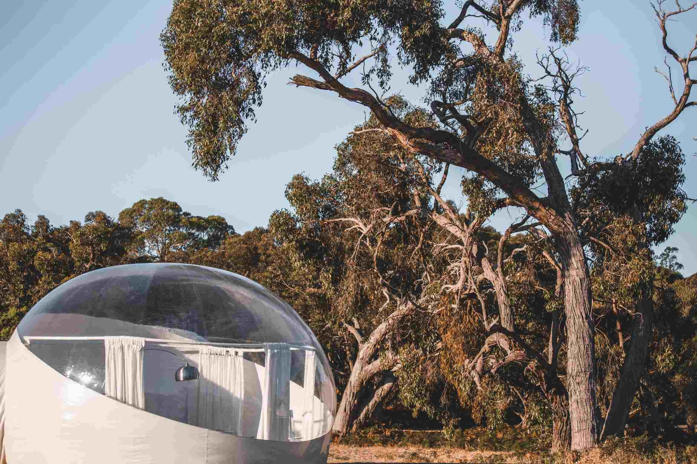 Coonawarra Bubble Tents - Whitsundays Accommodation
