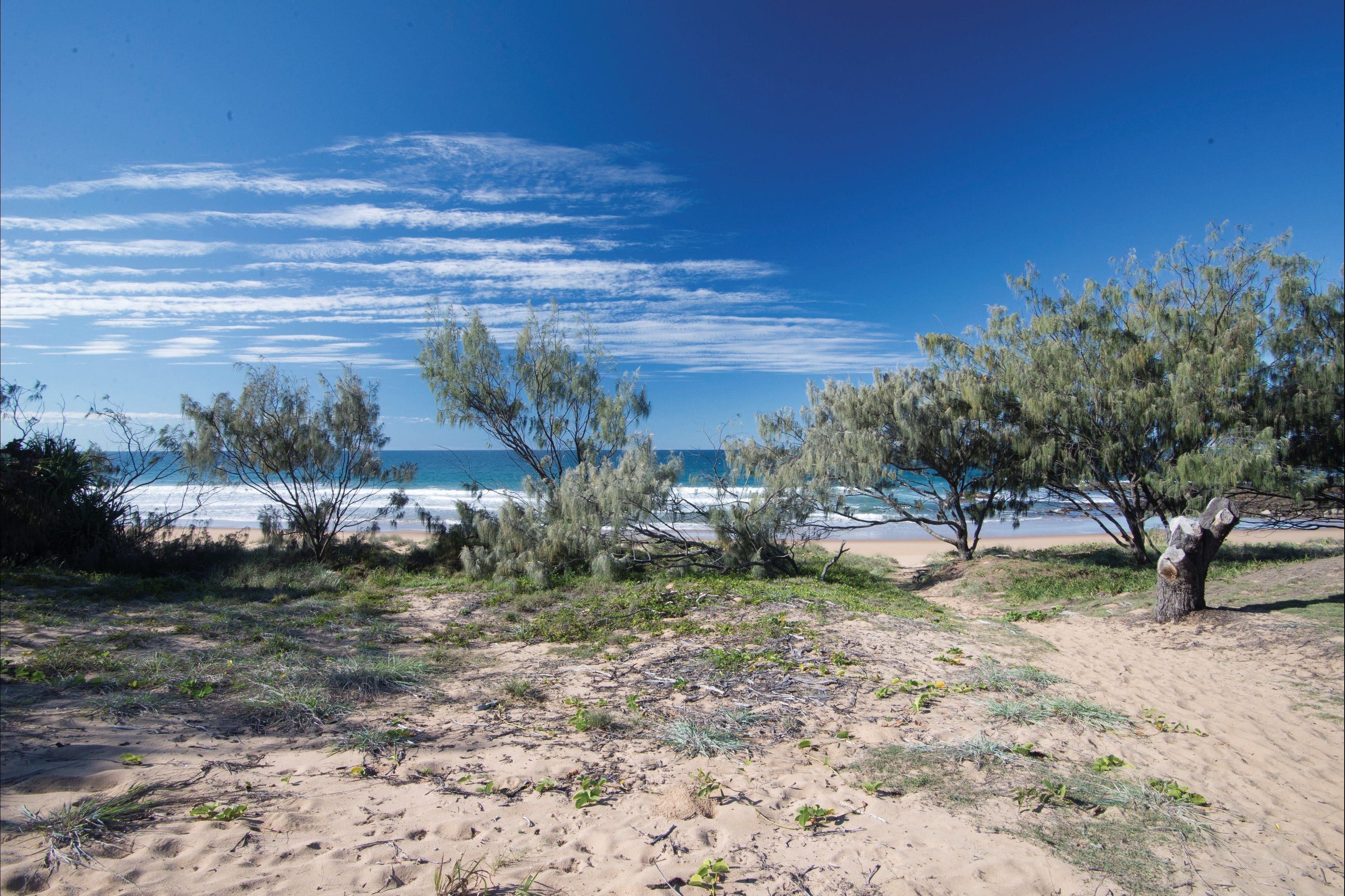 Deepwater National Park camping - Whitsundays Accommodation