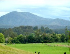Bellingen Farmstay - Whitsundays Accommodation