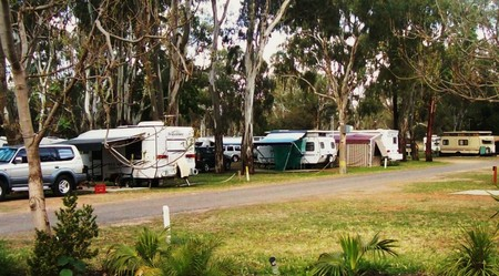 Buronga Riverside Tourist Park - Whitsundays Accommodation
