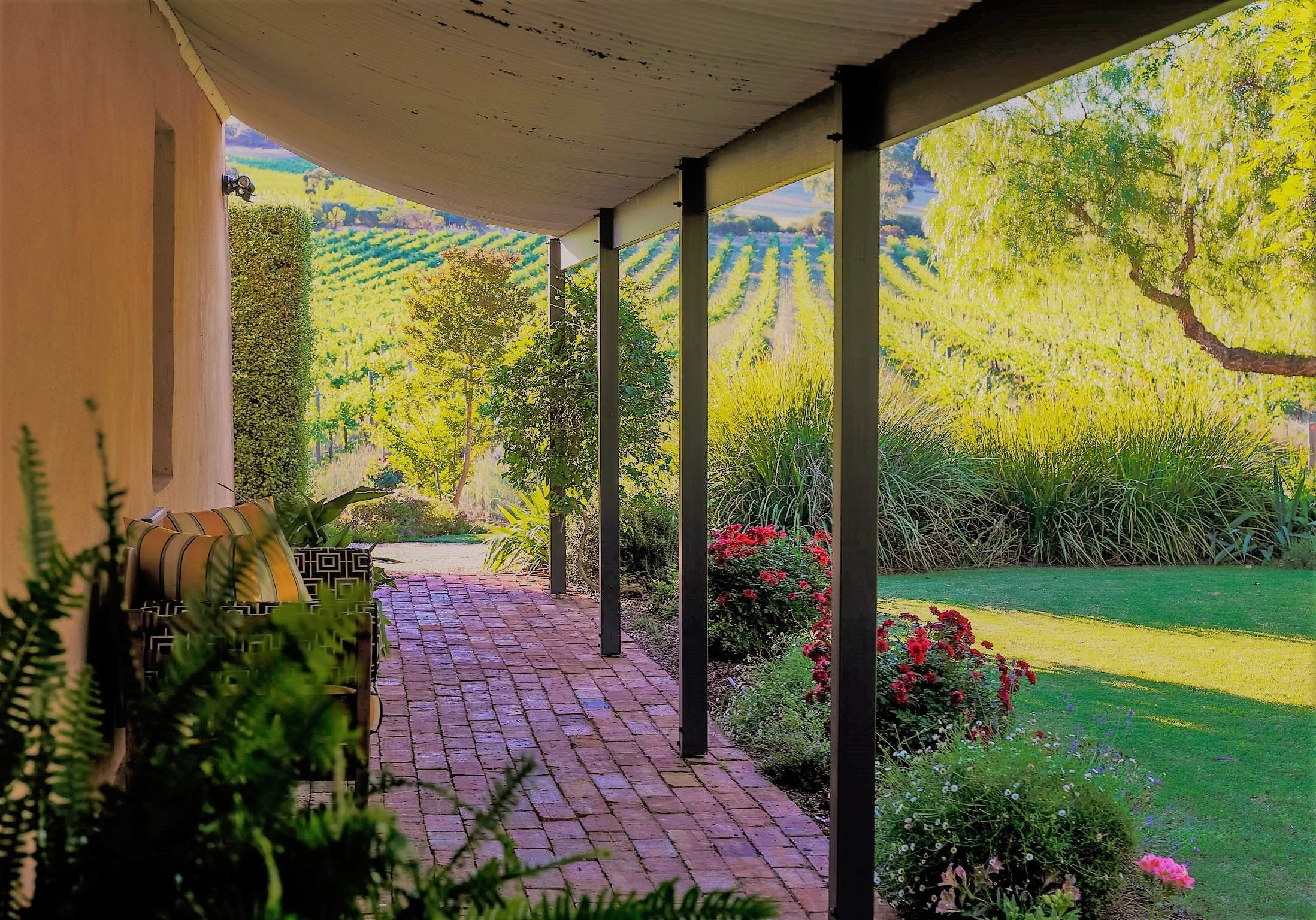 Seppeltsfield Vineyard Cottage - Whitsundays Accommodation